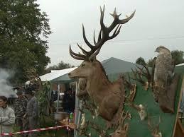 Festivalul Vânătorii de la Bata, un eveniment de 10!