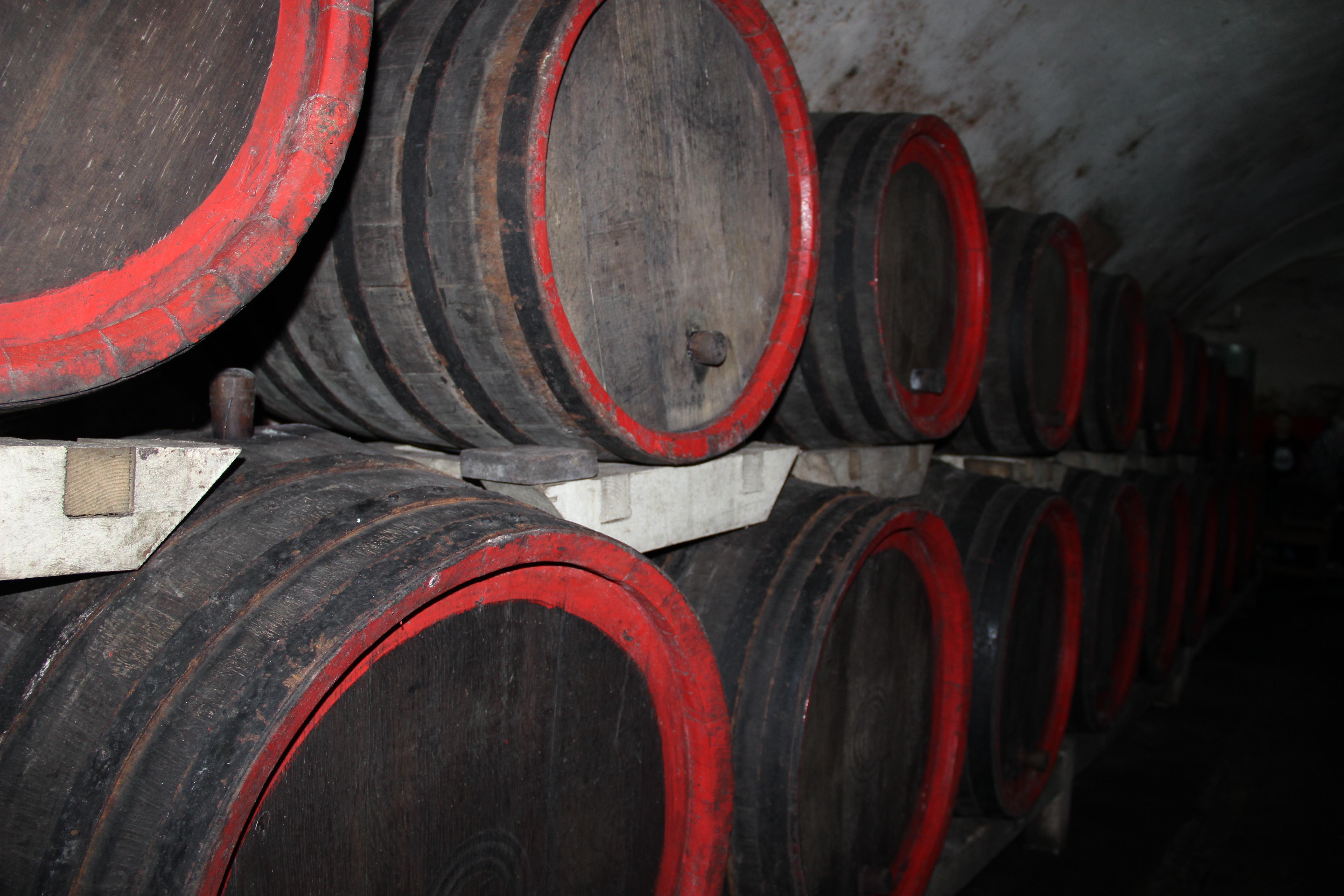Circuitul Vinului în Podgoria Aradului: O experienţă pe care nu trebuie să o ratezi!