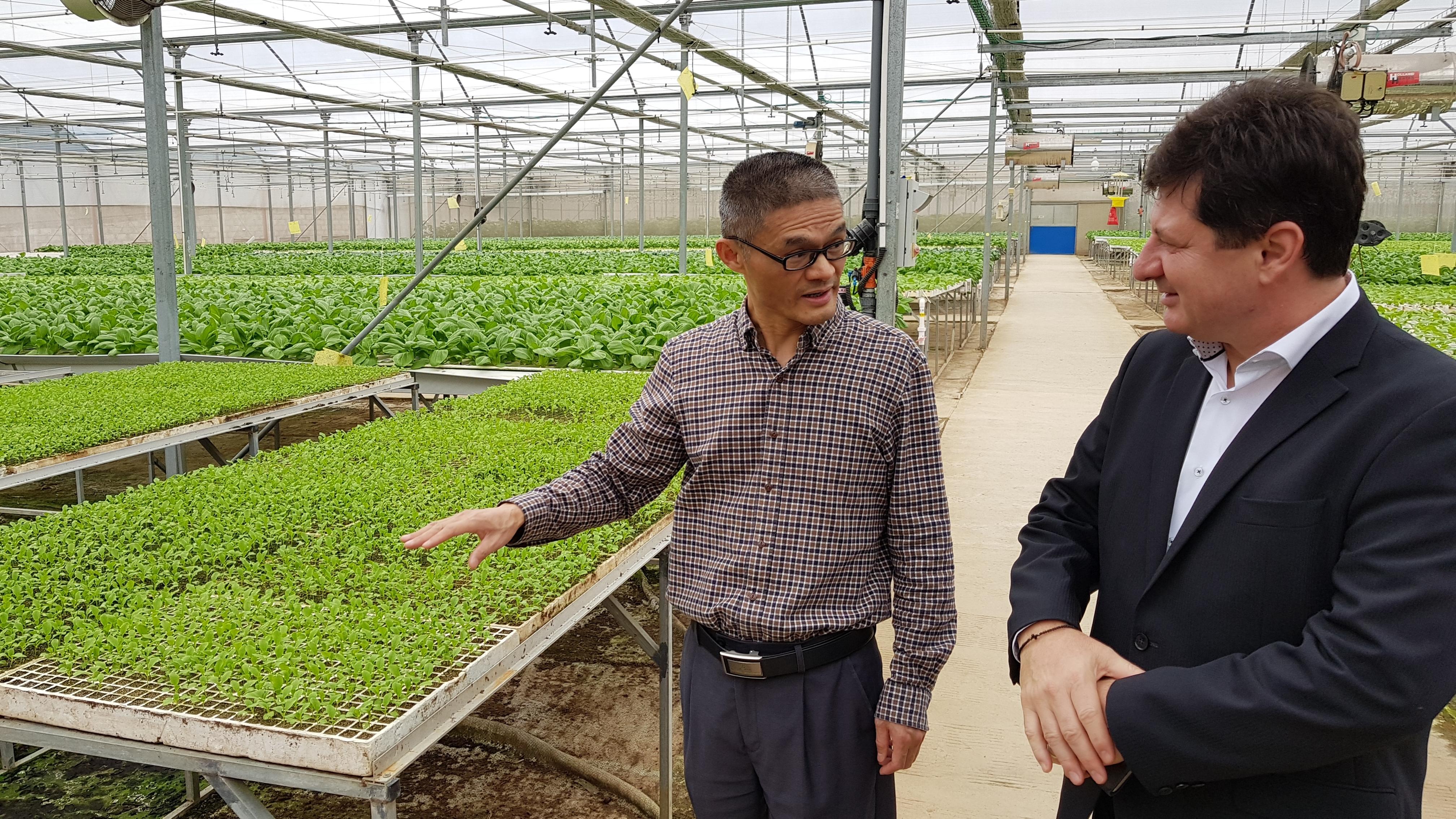 Iustin Cionca: Am discutat ca în primăvară Aradul să fie inclus în calendarul unei misiuni economice din Fujian!
