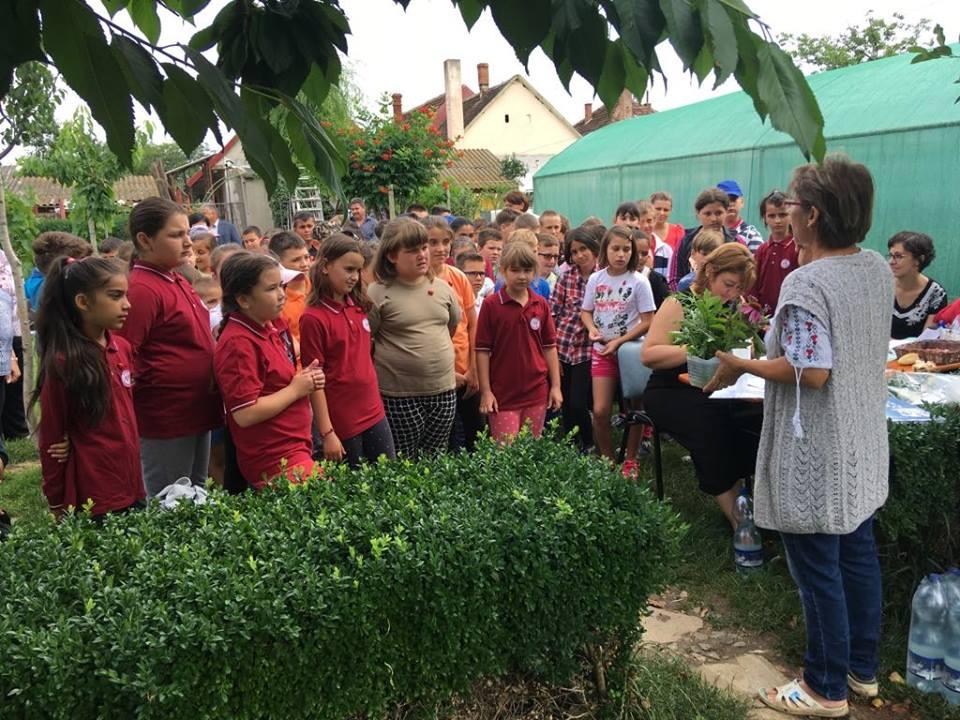 Consiliul Județean Arad a organizat o activitate inedită în aer liber,  pentru 100 de elevi